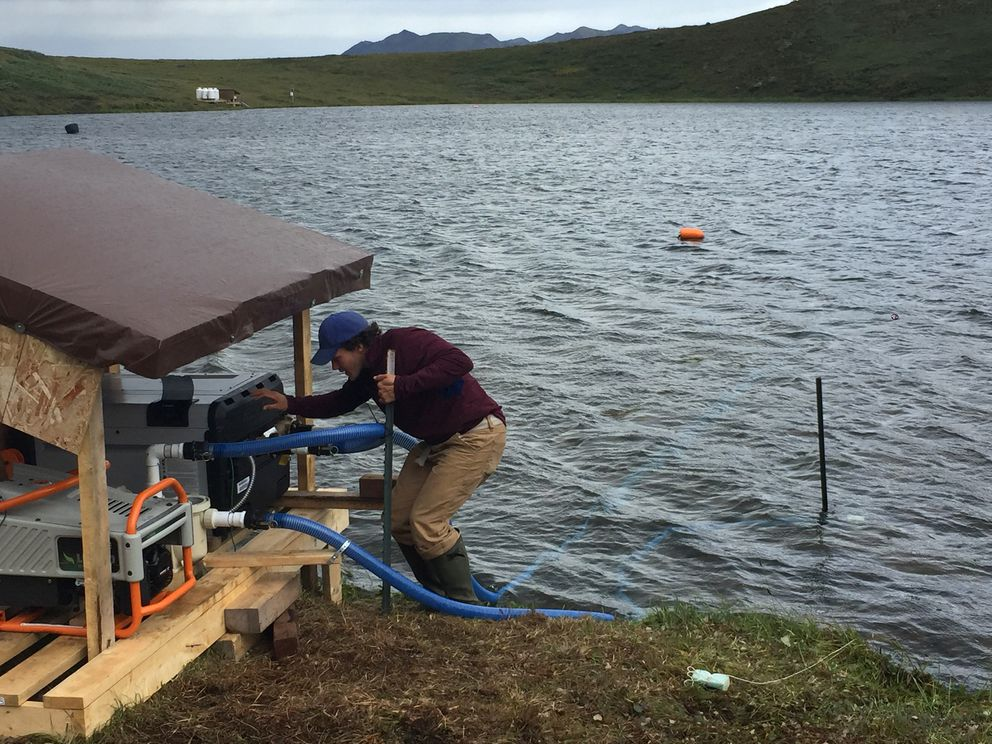 Nick Barrett works on the swimming pool heater used to heat Fog 1 lake. (Kelsey Lindsey / Alaska Dispatch News)