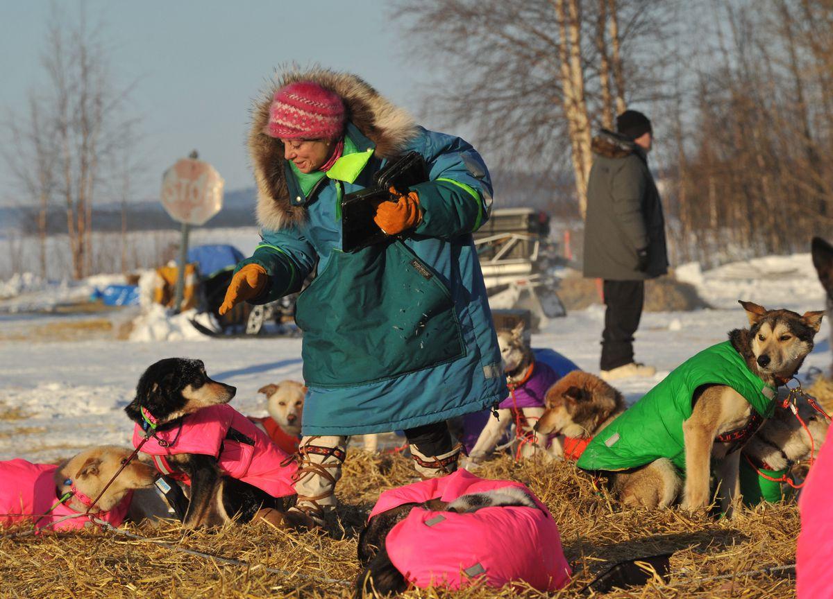 DeeDee Jonrowe works with her dog team at the Tanana checkpoint on Wednesday. (Bob Hallinen / Alaska Dispatch News)