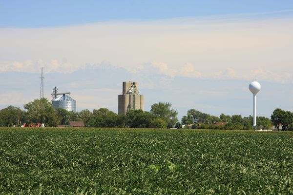 This soybean field thrives on the edge of a small town in western Iowa.