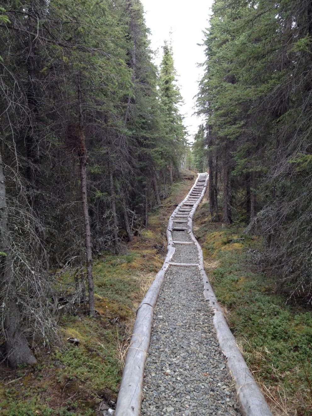 The Seven Lakes Trail includes a staircase. The trail is in the Kenai National Wildlife Refuge. (Lisa Maloney)