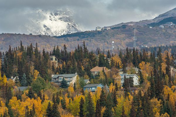 Fall colors dot the Anchorage hillside as seen from Potter Marsh on Thursday, Oct. 3, 2019. (Loren Holmes / ADN)