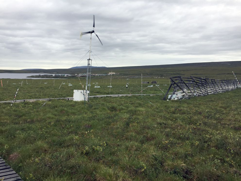 Snow fences and a wind turbine stand on the Arctic tundra at Toolik Field Station. (Kelsey Lindsey / Alaska Dispatch News)