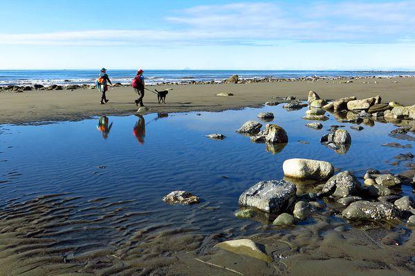 Visitors walk along the beach near Homer. (Clark Fair photo)