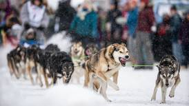 Six past champs, including Dallas Seavey and Thomas Waerner, sign up for the 2022 Iditarod