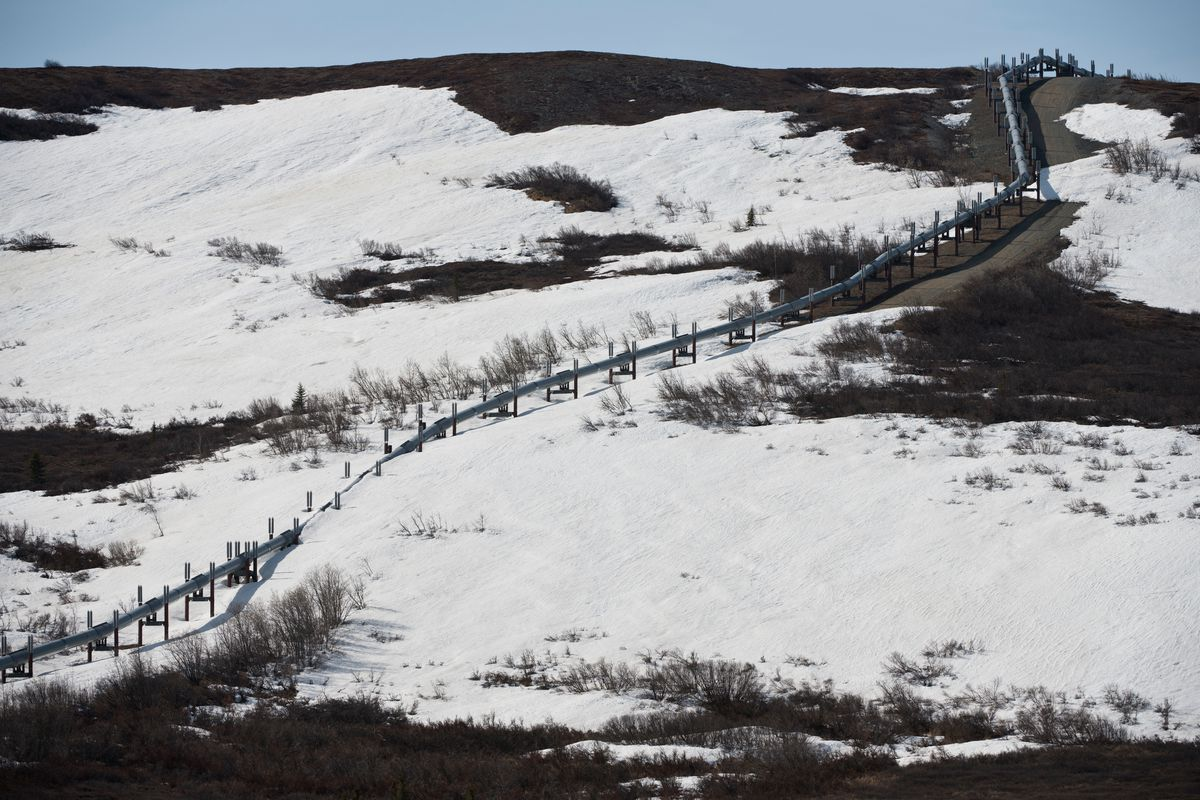 A segment of the Trans-Alaska Pipeline photographed along the Richardson Highway between Glennallen and Delta Junction on May 13, 2020. (Marc Lester / ADN)