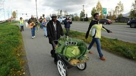 Refugee farmers wheel giant cabbage to market in Anchorage
