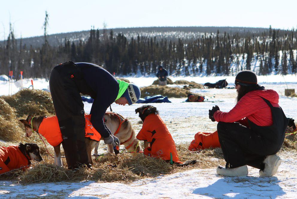 Joar Leifseth Ulsom readies his dog team for departure Friday in Ophir. (Zachariah Hughes/for ADN)