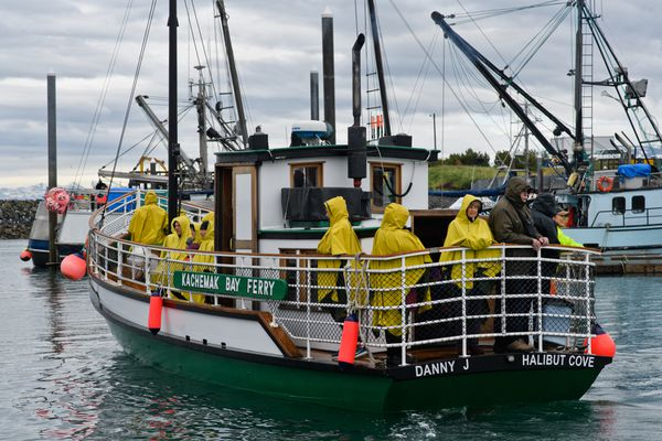 The Danny J departs from the Homer boat harbor to Halibut Cove on June 20, 2018. (Marc Lester / ADN)