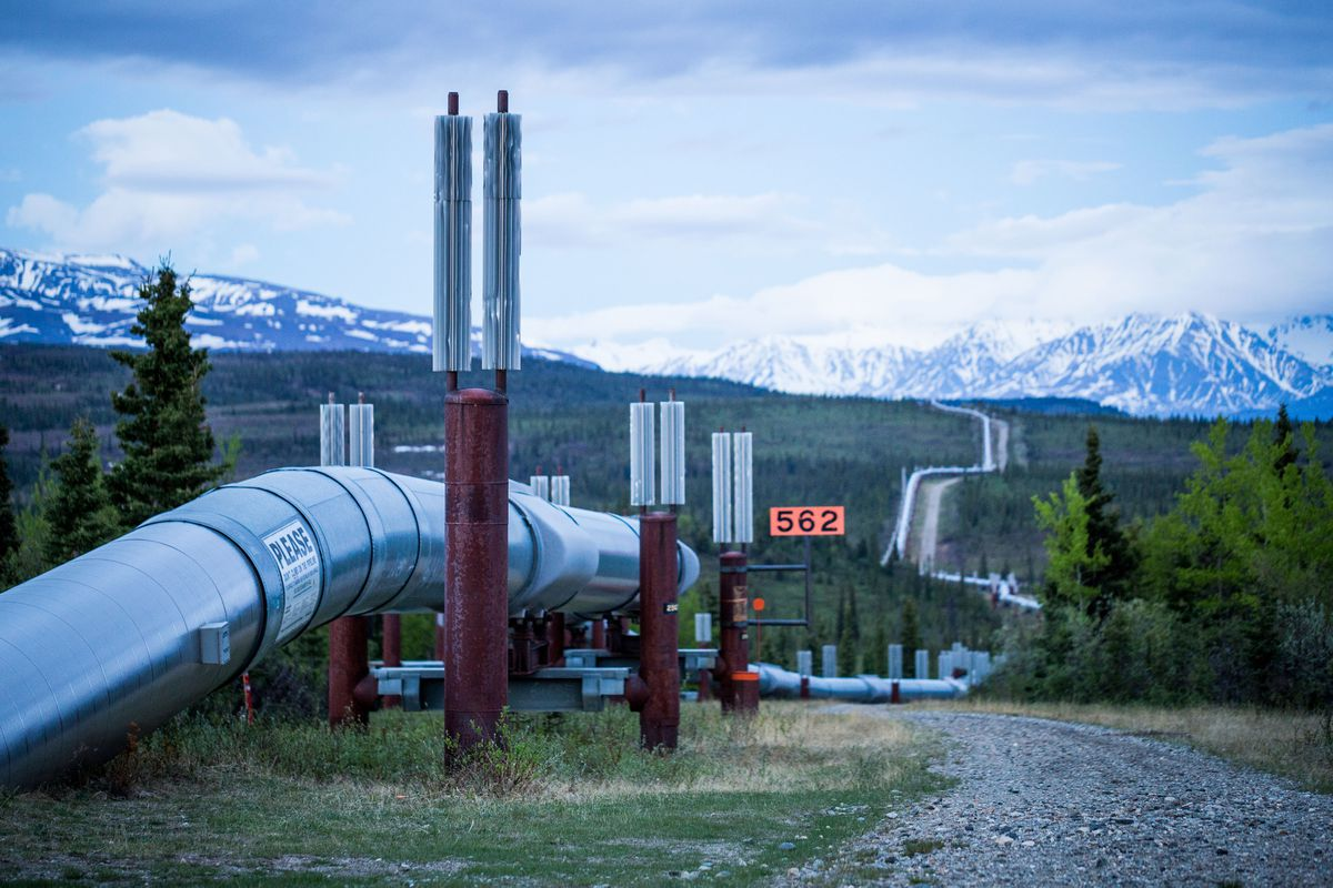 The trans-Alaska pipeline, seen here near Delta Junction. The 800-mile oil pipeline is a critical part of the state's oil production infrastructure. June 7, 2014. (Loren Holmes / Alaska Dispatch News)