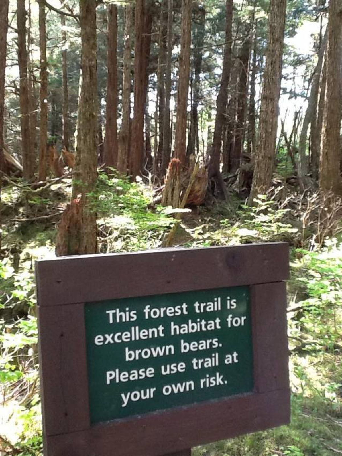 A sign at a Sitka-area trail warns hikers of the presence of bears. (ADN reader submission)