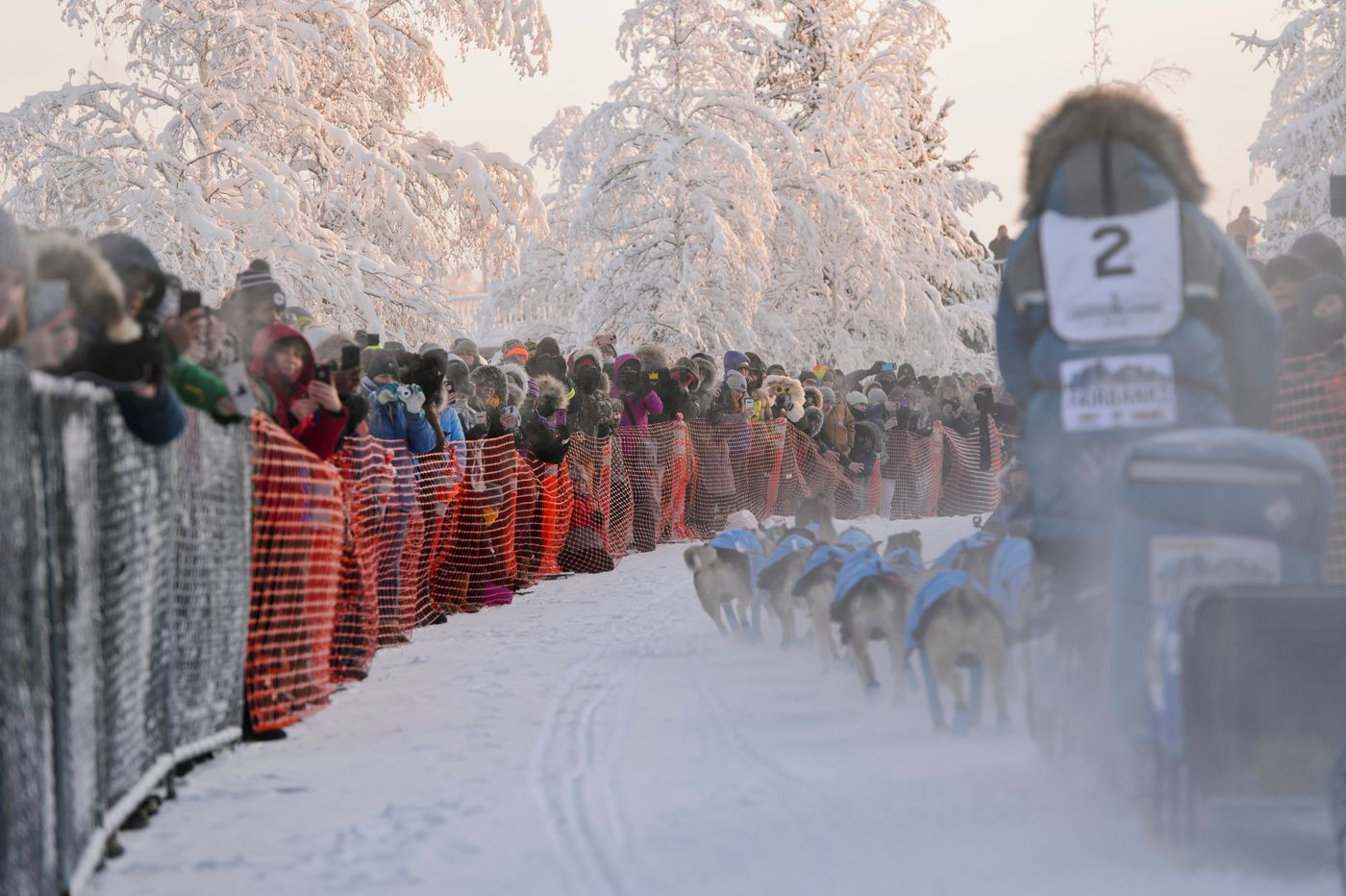 Fans line the chute to watch mushers leave Fairbanks. (Marc Lester / Anchorage Daily News)