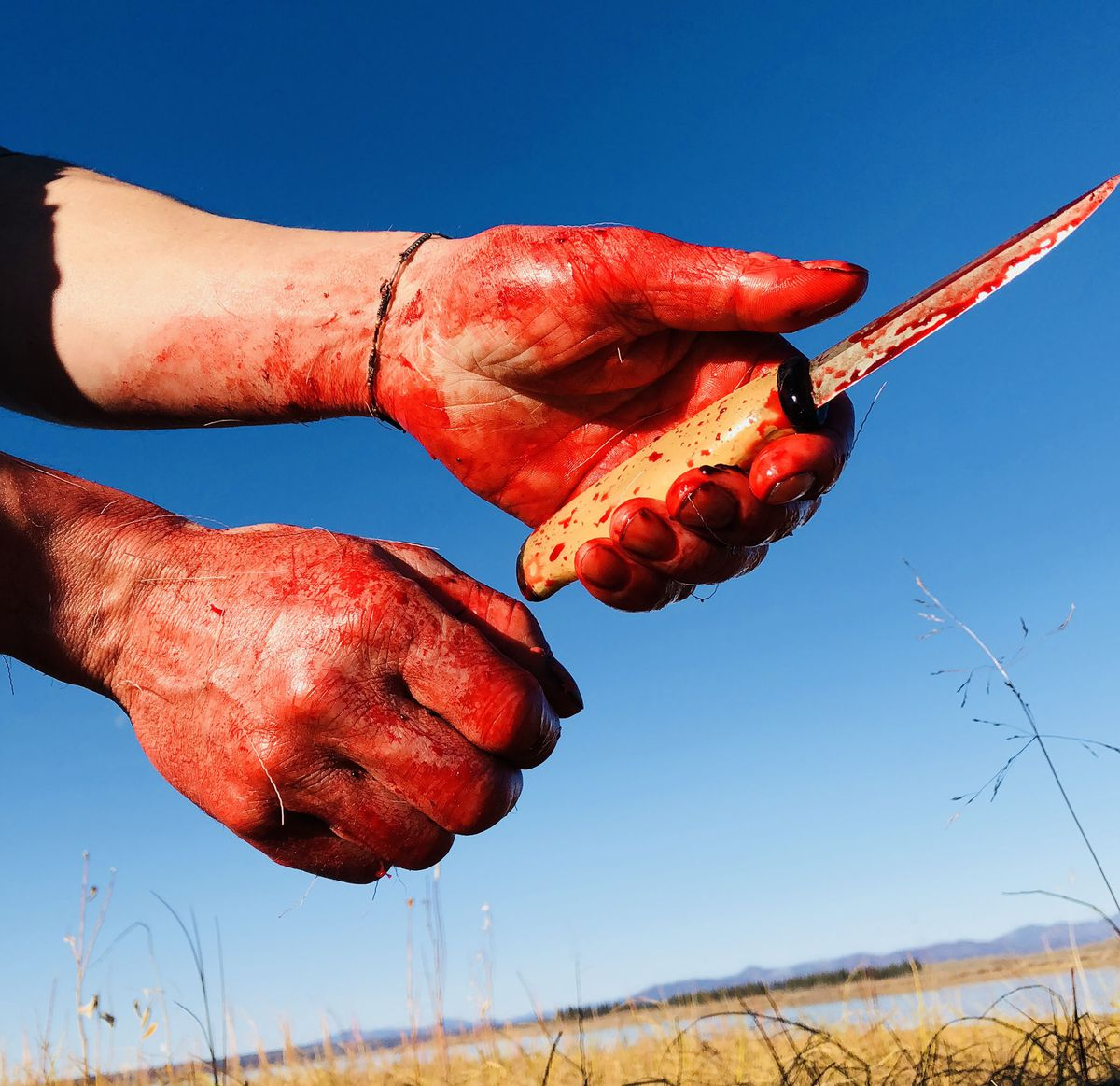 Hands covered with blood after gutting a caribou. (Seth Kantner photo)