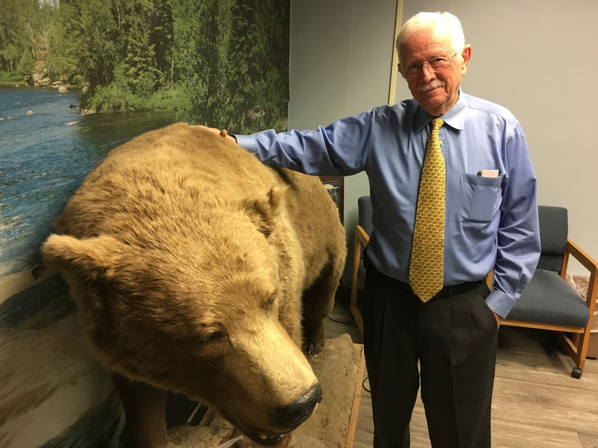 "Bob Bell took this bear near Chelatna Lake in the early 1990s, a story told in his book ""Oh No! We're Gonna Die."" It stands in the conference room of his Anchorage engineering firm. (Charles Wohlforth / ADN)"