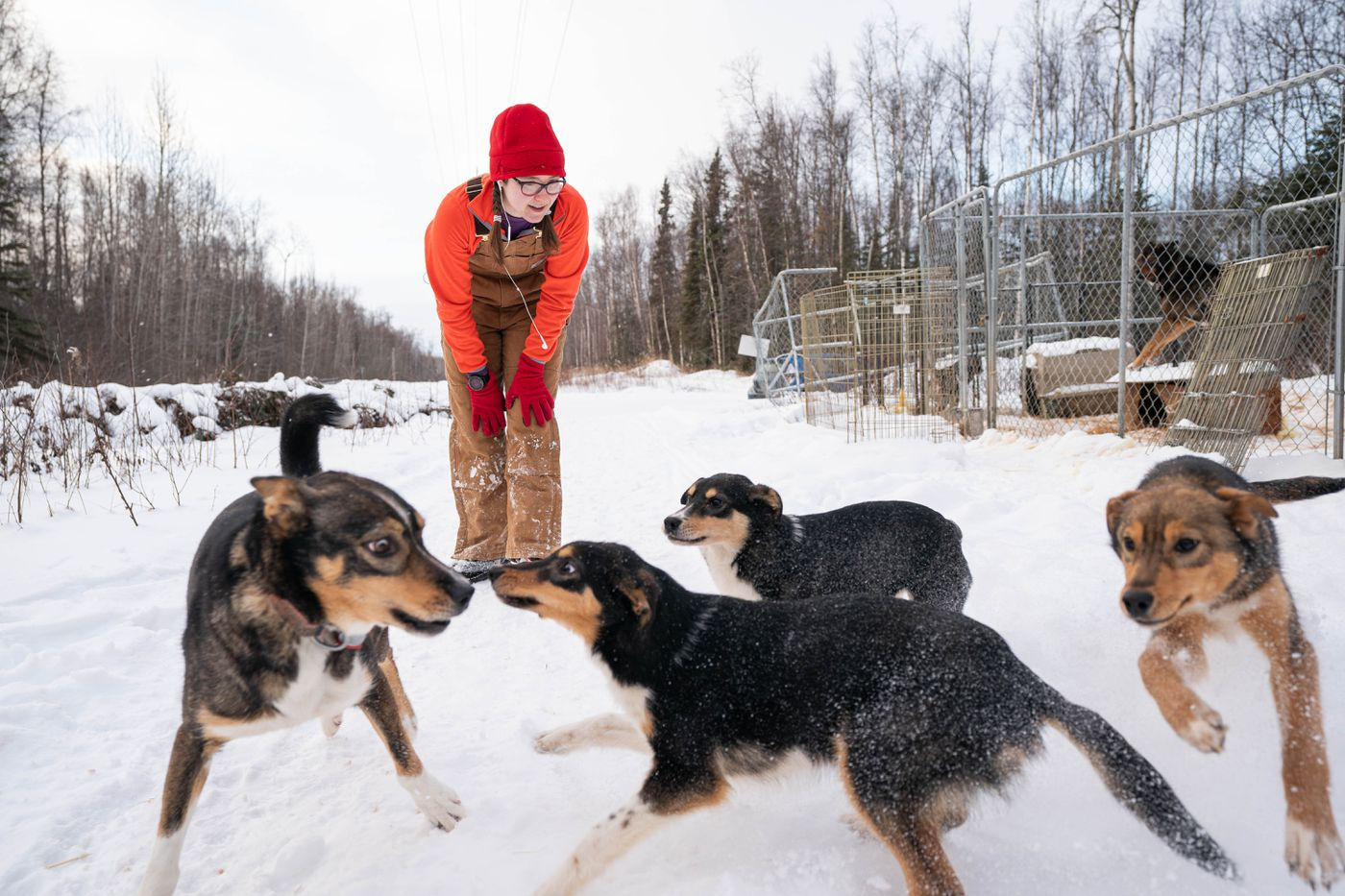 Mapes watches as, from left, Sarah Jane, Moana, Mulan and Rapunzel chase each other in the snow. (Loren Holmes / ADN)