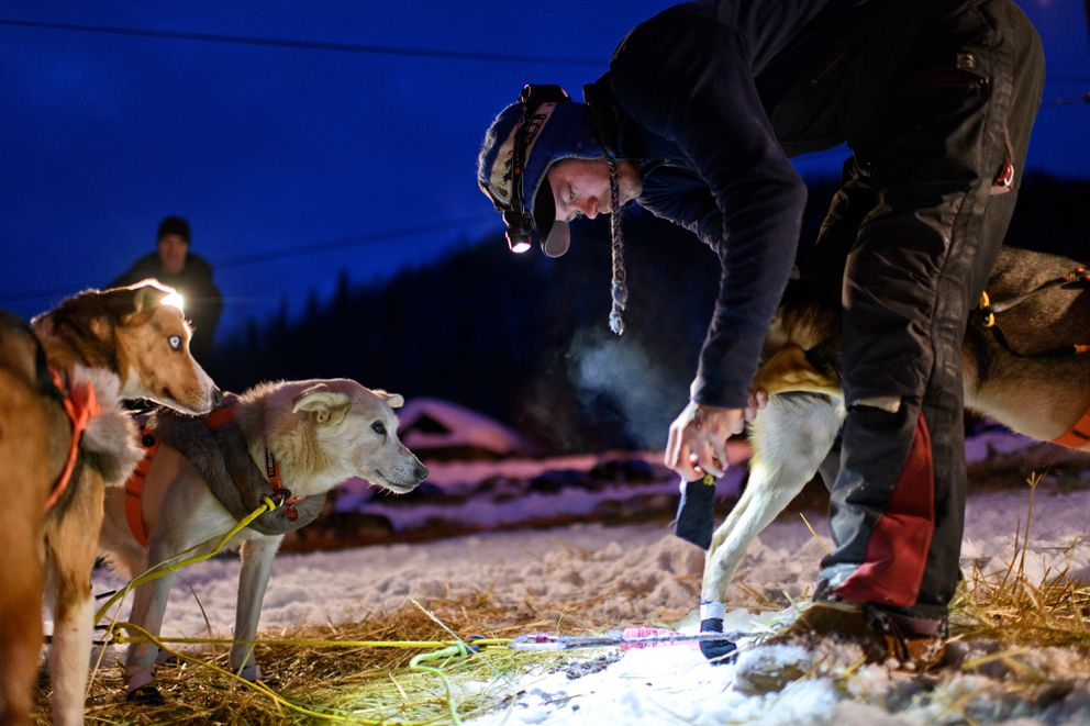 Joar Leifseth Ulsom booties his team before he leaves Takotna on March 6, 2019, in the Iditarod Trail Sled Dog Race. (Marc Lester / ADN)
