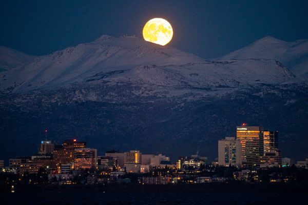 The nearly full moon rises over downtown Anchorage on Friday, Oct. 30, 2020, a few hours before it will be full. The second full moon in a month is known as a Blue Moon, which will happen this year on Halloween. (Loren Holmes / ADN)