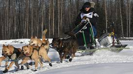 Anchorage musher Chad Stoddard finishes as Iditarod's top rookie in 23rd place