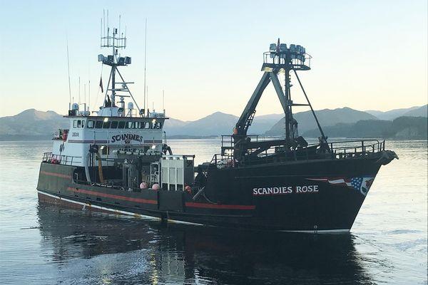 F/V Scandies Rose sank near Kodiak, Dec. 31, 2019. Photographed Aug. 15, 2019 at Ocean Beauty, Kodiak. (Photo by Bret Newbaker)
