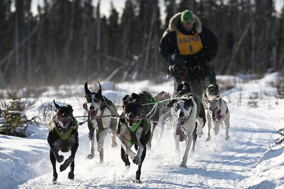 Michael Tetzner won the Open class,16-mile race as sprint sled dogs hit the trails at Tozier Track during the first race held in Anchorage this season due to weather related trail conditions. Mushers competed in the two-day Alaska Sled Dog Racing Association Championship on Sunday, Feb. 16, 2020. (Bill Roth / ADN)