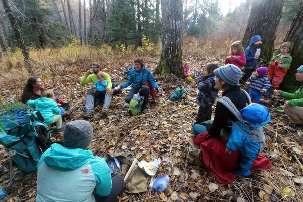We have lunch in the forest on Seldovia's weekly kid hike day last fall. This runs every Monday, year round, and is attended by homeschoolers, preschoolers, and out-of-town visitors.