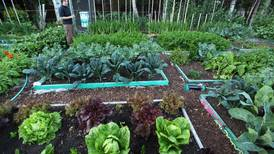 Alaskans would find a lot in common with Wyoming's short-season gardeners