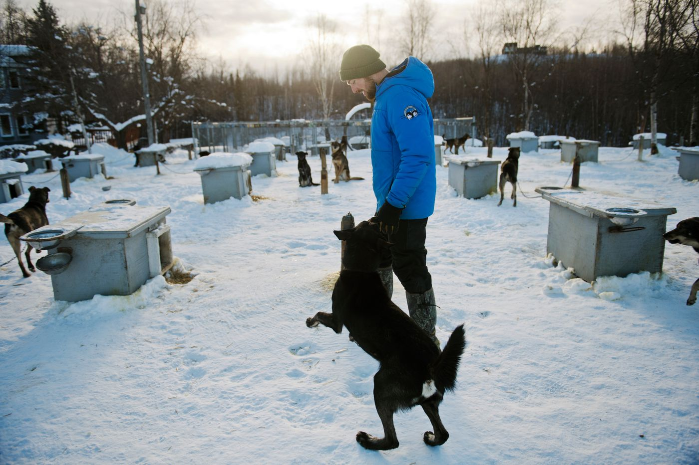 Tim Pappas is an Iditarod veteran and an apprentice for Martin Buser at Buser's Big Lake kennel. This year, Buser offered Pappas the chance to run the kennel's fastest dogs in the Iditarod. Photographed on February 25, 2020. (Marc Lester / ADN)