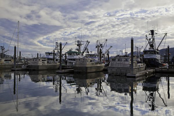 Most of the Copper River fishing fleet sits in the Cordova Harbor during the first week of June, awaiting an opener. (Photo by Bob Martinson) ONE TIME USE