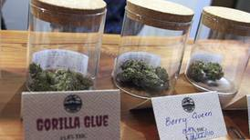 First Alaska retail pot shops get approval for on-site consumption