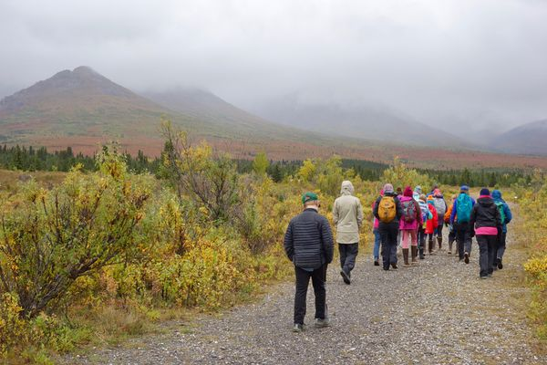 A class of sixth-graders from Fairbanks attended the Denali Science School, a three-day program in Denali National Park and Preserve. Ned Rozell photo.