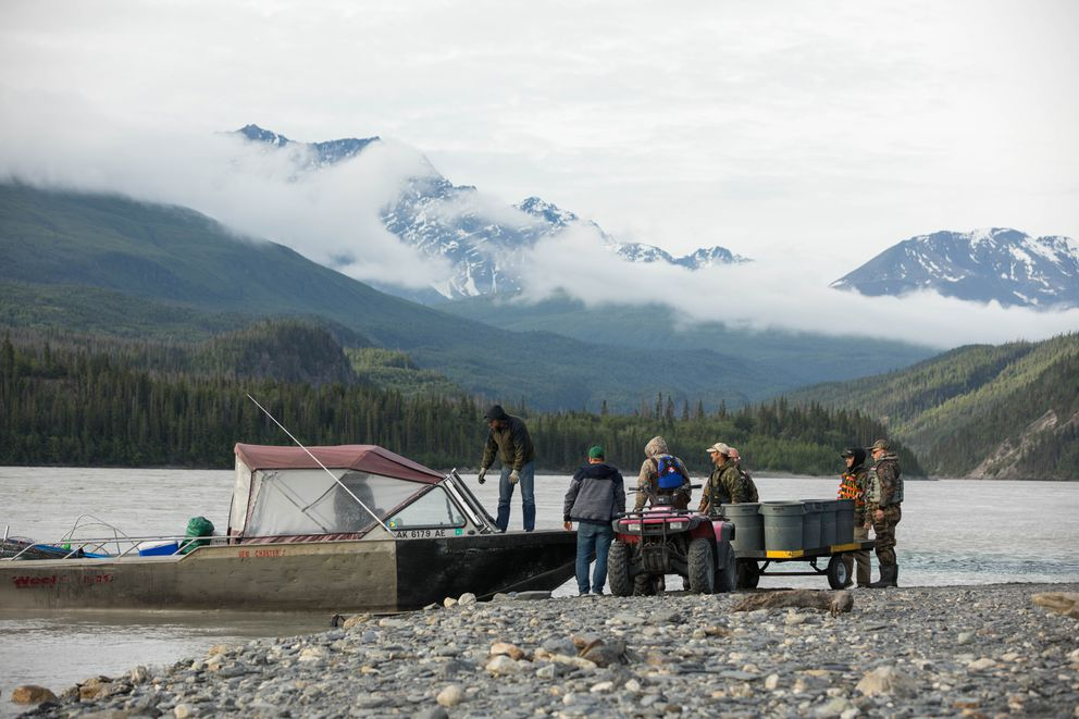 Fishermen offload their catch on June 29, 2017, at O'Brien Creek after spending the night fishing with Mark Hem's charter service. (Loren Holmes / Alaska Dispatch News)