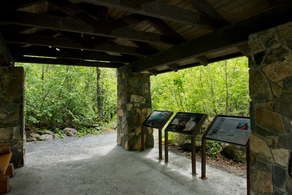 A pavilion along the path to Exit Glacier was once a place to view the glacier. Now it's surrounded by alders. (Marc Lester / Alaska Dispatch News)