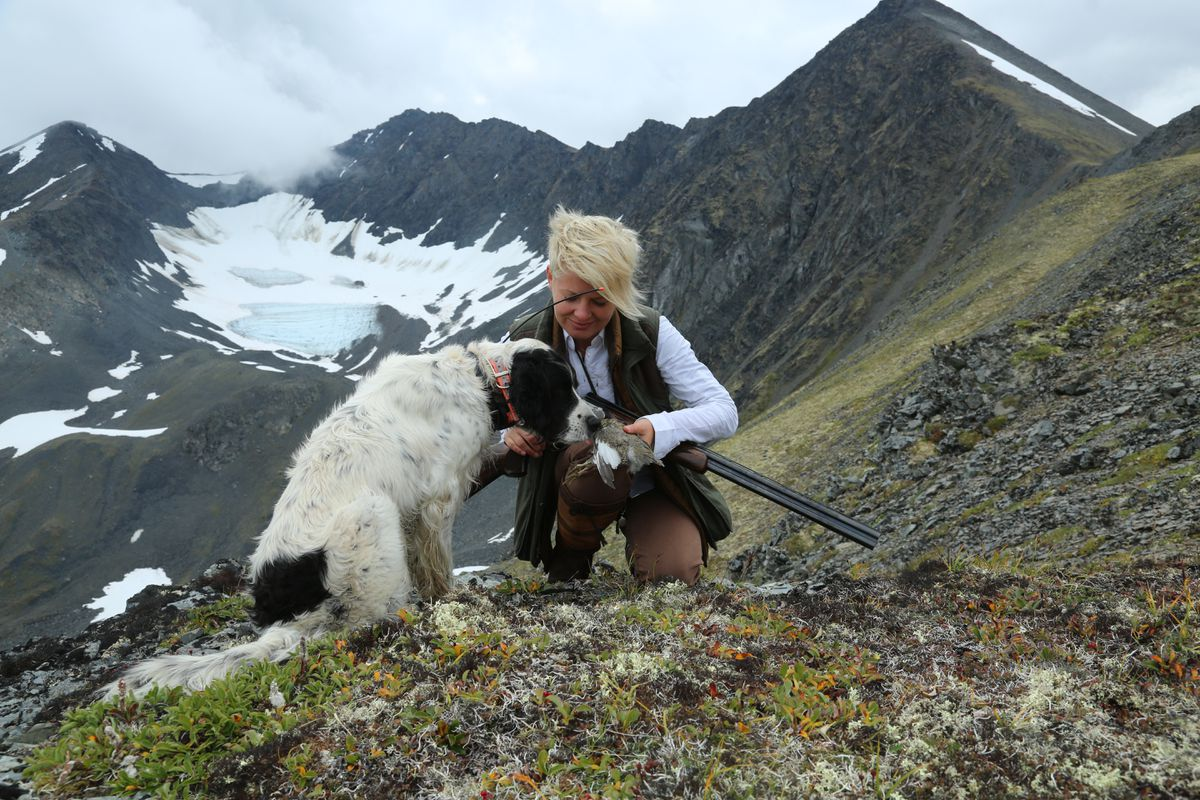 Christine Cunningham and Winchester, a 7-year-old English setter, examine a grouse taken in the Kenai Mountains during this year's opener. This was Winchester's sixth year in the field. (Photo by Steve Meyer)