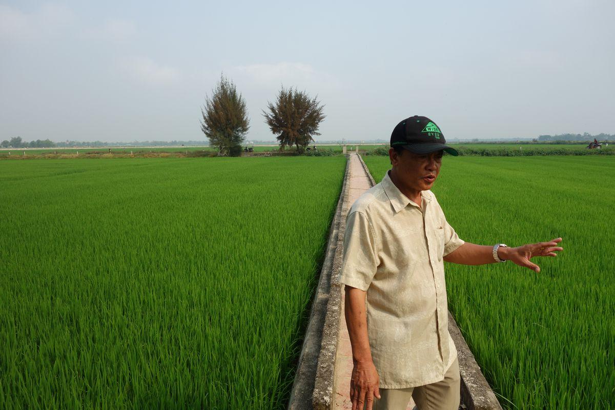 Guide Thanh leads a walk through the rice paddies around Hue, Vietnam. (Photo: Scott McMurren)