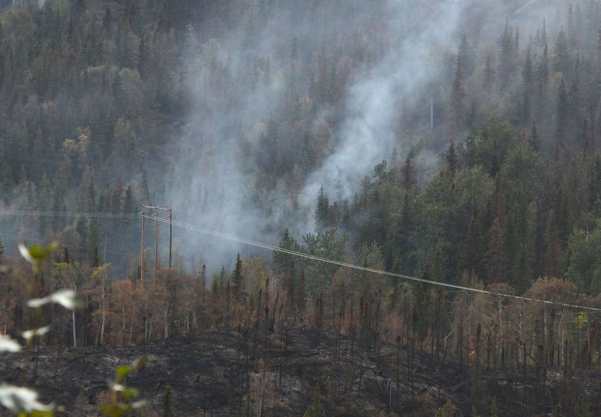 Powerlines are amidst the burned-over zone in the Swan Lake fire, Sept. 6, 2019. (Anne Raup / ADN)