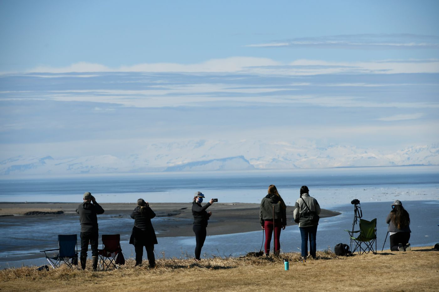 Several volunteers gathered atop a bluff overlooking the Kenai River to monitor belugas as they traveled upriver on April 25, 2021. (Marc Lester / ADN)