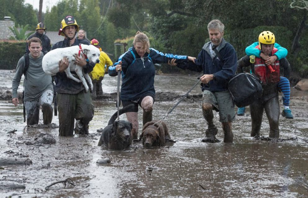 Emergency personnel evacuate residents and their dogs Tuesday after a mudslide in Montecito, California. Kenneth Song/Santa Barbara News-Press via REUTERS
