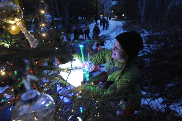 Lindsey Lea puts the finishing touches on a tree sponsored by Anchorage Fracture & Orthopedic Clinic as people begin walking on the 2.5k Mize Loop at Kincaid Park during the 4th annual Solstice Tree Tour hosted by the Nordic Skiing Association of Anchorage on Sunday, Dec. 15, 2019. (Bill Roth / ADN)