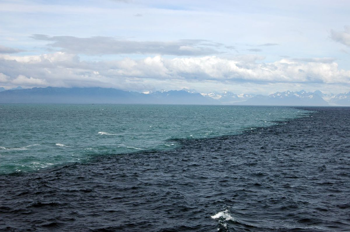Mythbusting The Place Where Two Oceans Meet In The Gulf Of - 5 different oceans