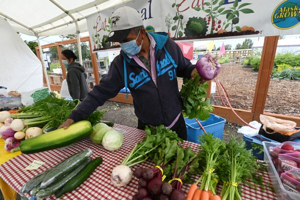Prem Niroula, right, and Bhai Subba tend a produce stand at the Grow North Farm along Mountain View Drive on Sunday, August 23, 2020. All of the produce that they were selling was grown by them. (Bill Roth / ADN)