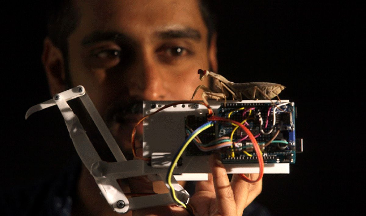 Lead author Vivek Nityananda holds a praying mantis atop a mantis-inspired robot arm. (Newcastle University, England)