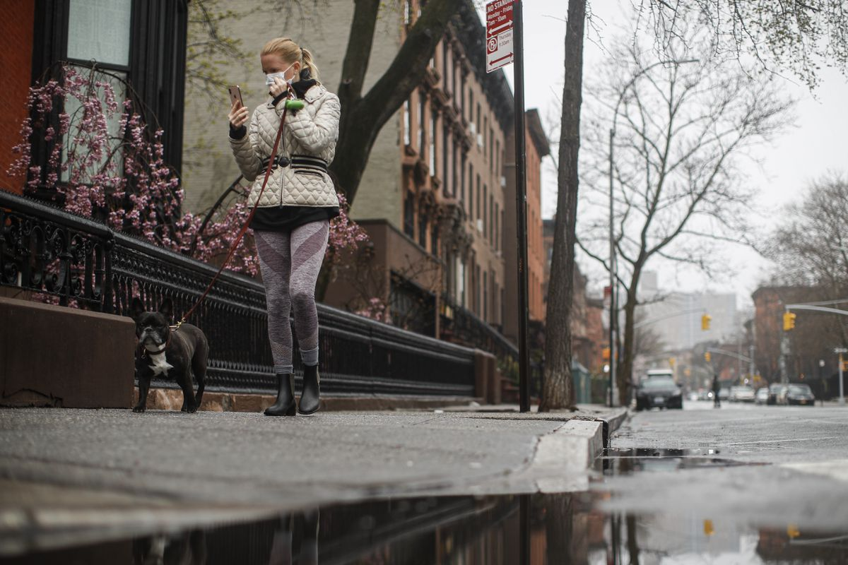 A pedestrian wearing a protective mask walks a dog along a mostly empty Dekalb Avenue, Sunday, March 29, 2020, in the Brooklyn borough of New York. (AP Photo/John Minchillo)