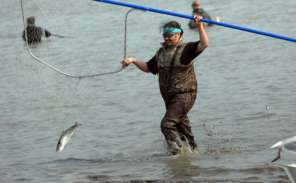 Anchorage's Ben Garman pulls a sockeye salmon from the mouth of the Kenai River on Wednesday, July 10, 2019. (Matt Tunseth / ADN)