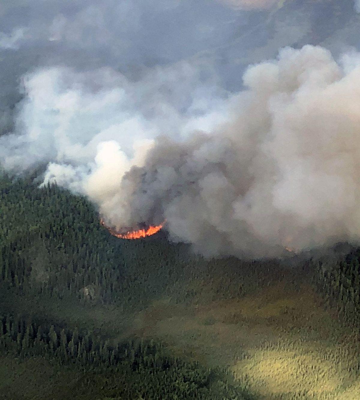 Taixtsalda Hill Fire on Saturday, July 28. (BLM Alaska Fire Service)