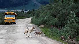 State ignores decline of Denali National Park economy