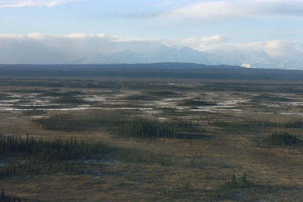 OPINION: Keep the Chuitna River's waters for Alaska salmon - and make clear that our renewable resources like salmon won't be traded for a fast buck. Pictured: The site of the proposed Chuitna coal mine.