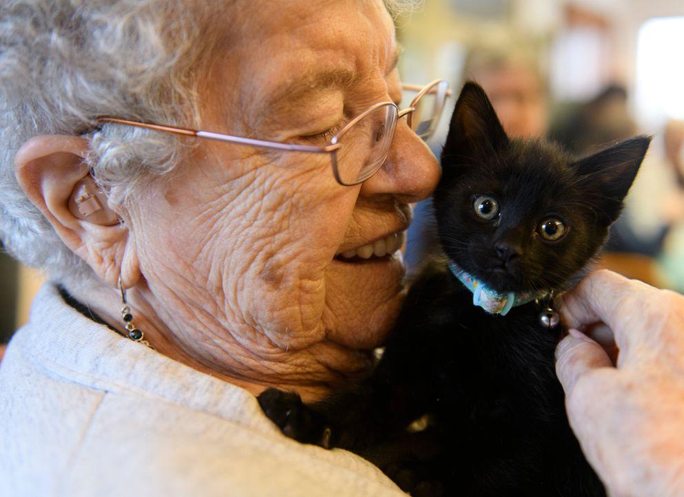 Rosa Osborne cuddles a kitten named Pansy. (Marc Lester / ADN)