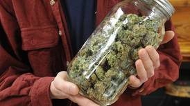 Fairbanks company drawn to Eagle River despite past opposition there to commercial cannabis