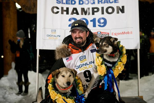 Peter Kaiser poses with his lead dogs, Morrow, left, and Lucy. Peter Kaiser of Bethel reaches Nome to win the 2019 Iditarod Sled Dog Race on March 13, 2019. (Marc Lester / ADN)