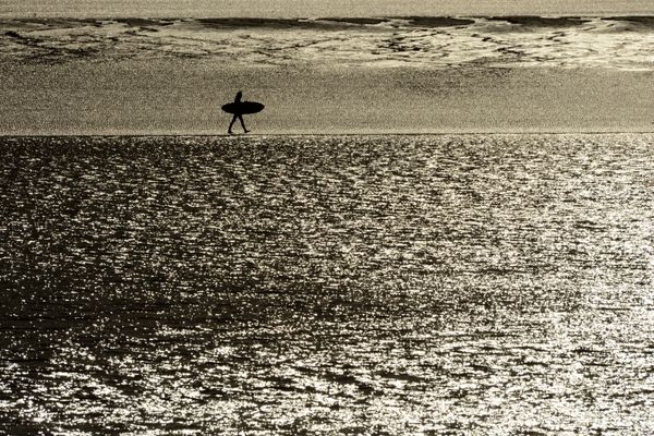 A surfer walks along a sandbar witha paddleboard. (Bob Hallinen / ADN)
