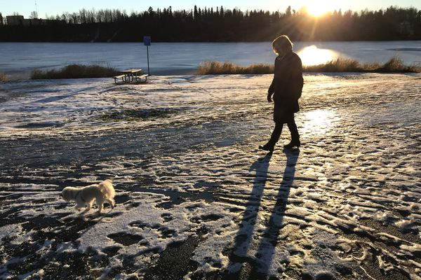 Mary Beth Risvold walks Yoda, a 3 1/2-year-old Poochin, along an icy trail near Westchester Lagoon on Tuesday afternoon, Nov. 13, 2018, after the recent snow and rain storms. (Bill Roth / ADN)